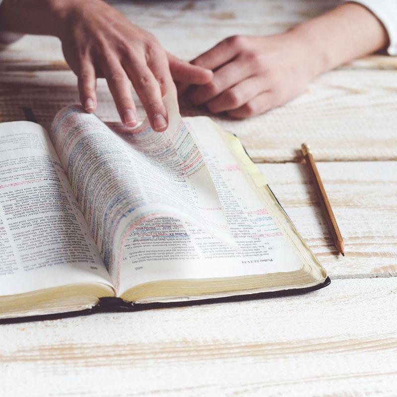 Bible-Study-SQ800